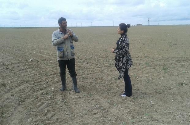 Tarım Danışmanları Çiftçilerle Buluşuyor