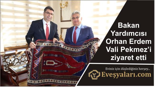 Bakan Yardımcısı Orhan Erdem Vali Pekmez'i ziyaret etti