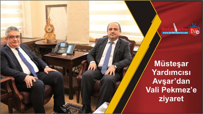 Müsteşar Yardımcısı Avşar'dan Vali Pekmez'e ziyaret