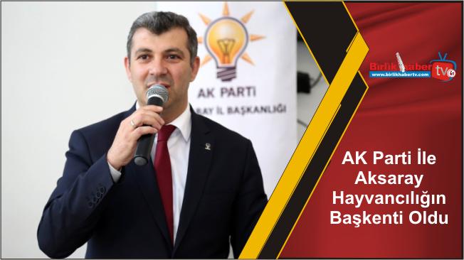 AK Parti İle Aksaray Hayvancılığın Başkenti Oldu