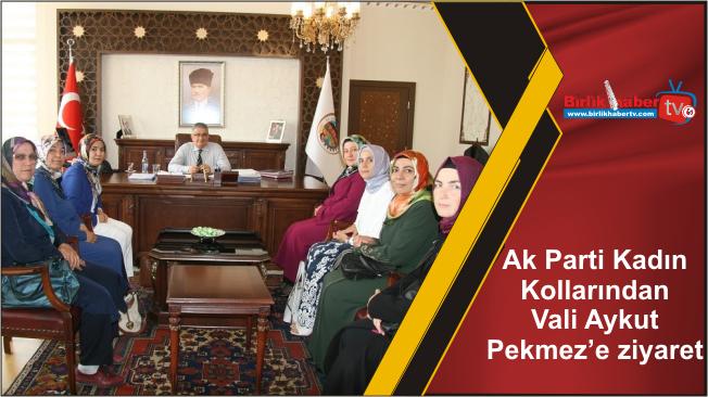 Ak Parti Kadın Kollarından Vali Aykut Pekmez'e ziyaret