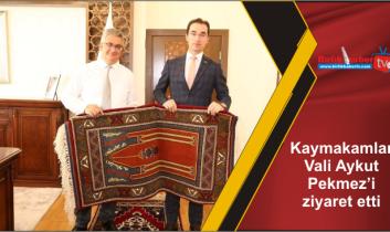 Kaymakamlar Vali Aykut Pekmez'i ziyaret etti